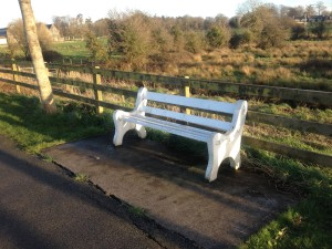 Bench along the Maigue