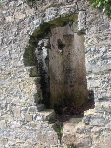 An Irish Ruin