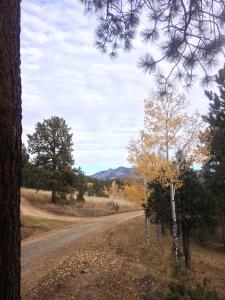 Highlands Ranch probate