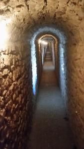 Inside the Rocca Majore